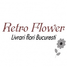 SC RETRO FLOWER SRL