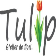 Tulip - Atelier de flori.