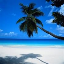 Luna de miere - Sejur Mexic, plaja Cancun 9 zile - aprilie 2015