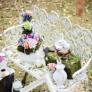 Servicii nunta