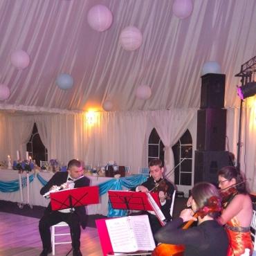 CVARTETUL AMADEO - primite invitati si evenimente corporate