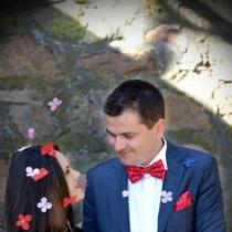 Confeti de nunta: fluturasii din orez Rice Butterflies